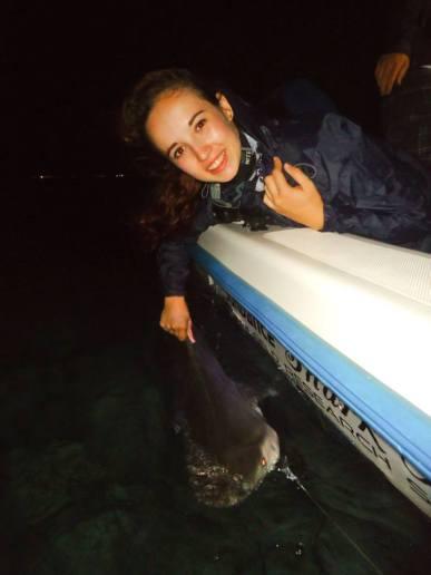 Megan collecting data with Bimini Shark Lab