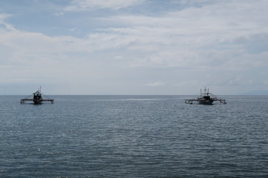 Bohol Fisheries.JPG