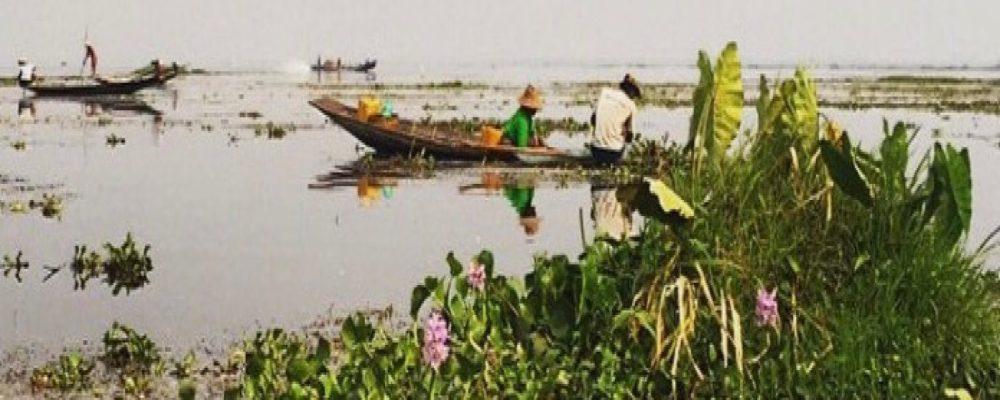 cropped-inle-lake.jpg
