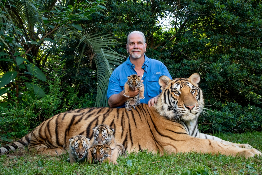"The Truth About ""Tiger King"" And Cats in Captivity - Kara ..."